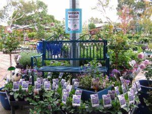 Garden Releaf Day