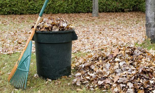 yard rubbish removal in Capalaba