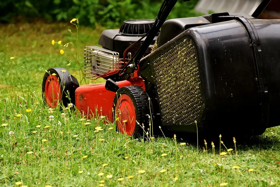 Lawn Mowing service in Brisbane East